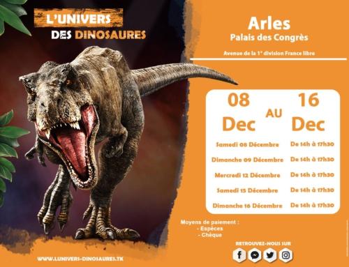 Du 8/12/2018 au 16/12/2018 : L'Univers des Dinosaures