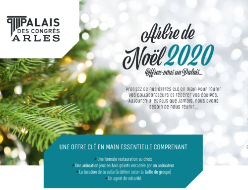 «Arbre de Noël 2020», offrez vous un Palais !
